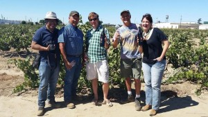 At the Soucie Vineyard, sandy soils and healthy old Zinfandel vines planted by Kevin Soucie's grandfather in 1916. The fruit is now sourced by Layne Montgomery,  owner/winemaker of @m2wines. @Lodi_Wine #LodiNative @alltheswirl @TheZinfandelOrg.
