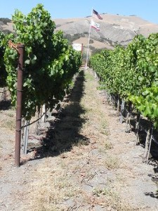 Santa Ynez Valley 045