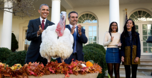 Nov. 25, 2015: The President and his daughters Sasha and Malia participate in the annual National Thanksgiving Turkey pardon ceremony in the Rose Garden with National Turkey Federation Chairman Jihad Douglas. Read more at http://www.businessinsider.my/white-houses-photos-pete-souza-2015-12/52/#q2TlPXhQlmJdjF3p.99