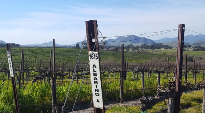 Get your tickets to Festival of Albariño, June 16-17!