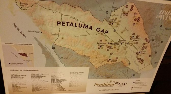 Flashback 2008!  Pinot pleasures from Sonoma Coast's Petaluma Gap