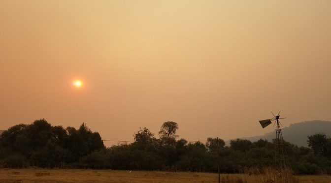 Nor Cal Fires: Looking Back, Moving Forward & Drinking Wine!