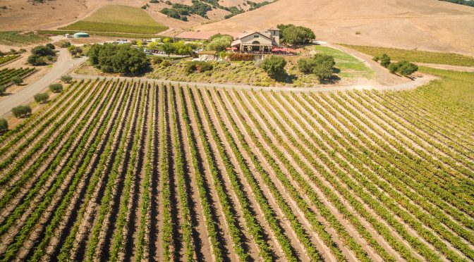 Immersion: Vineyard Exploration + Tasting @Signature Sonoma Valley – May 17th!