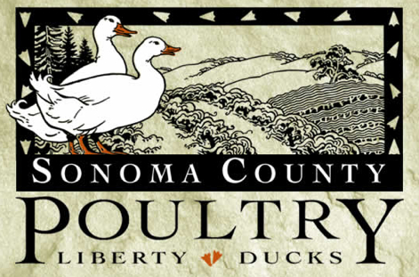 liberty_ducks_logo