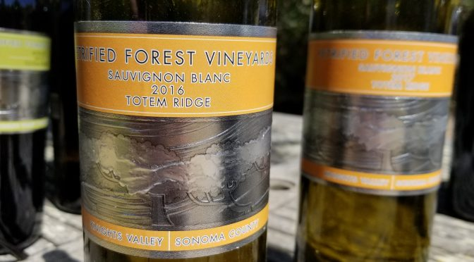 A Petrified Forest Experience On The Varietal Show