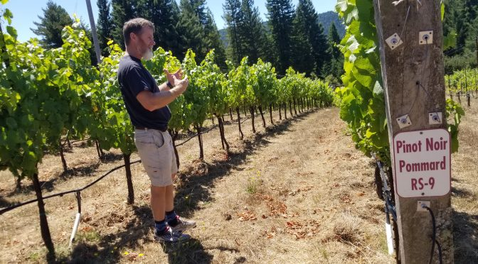 Drinking With Drew Family Cellars On The Varietal Show